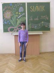 Slavik_039.jpg